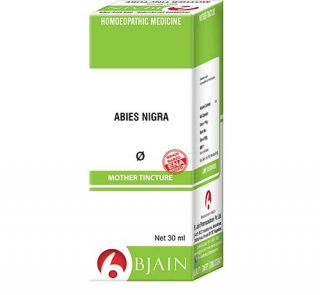 abies_nigra_4